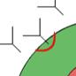 花粉症(アレルギー)が発症するまで 横浜 花粉症のことなら横浜駅東口スカイビル眼科